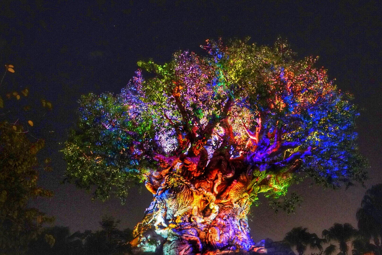 Review Disney After Hours Event At Animal Kingdom Living By Disney